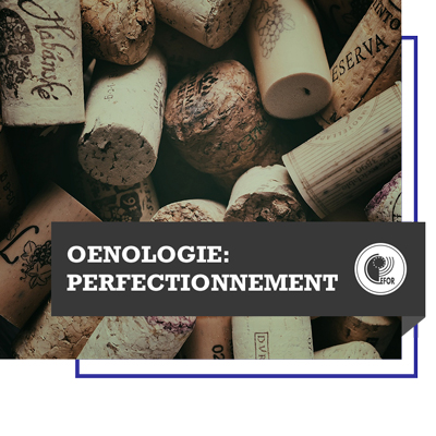 Oenologie : Perfectionnement (hors France)